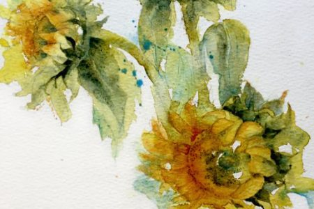 Sunflowers by Rosamond Jourdan